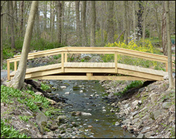 Elegant Single Rail Bridges